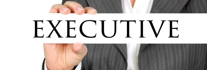 executive-454865_1280